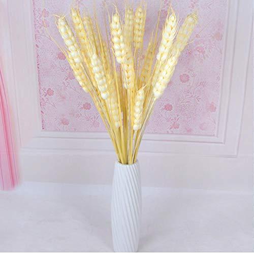 5 unids simulación trigo cebada espigas flores secas flores falsas decoración de la boda accesorios artesanales alto trigo artificial para el partido casero decoraciones del hotel
