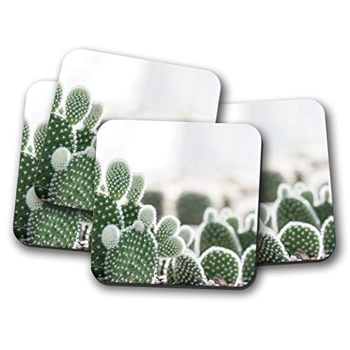 4er-Set – niedliche Kakteen Pflanzen-Untersetzer – Kaktus-Pflanzen Mädchen cooles Geschenk #16970