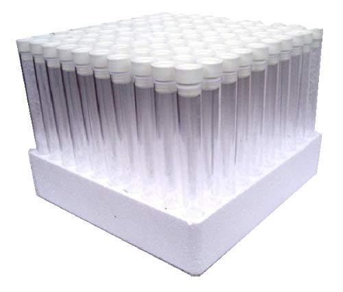 Plastic Test Tubes LTD Teströhrchen, mit weißem Deckel und Ständer, ca. 15cm lang, 100 Stück
