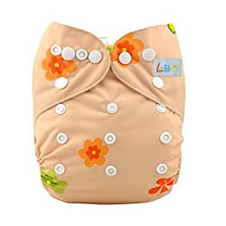 LBB(TM) Baby Resuable Washable Cloth Pocket Diaper,Florets and Skull
