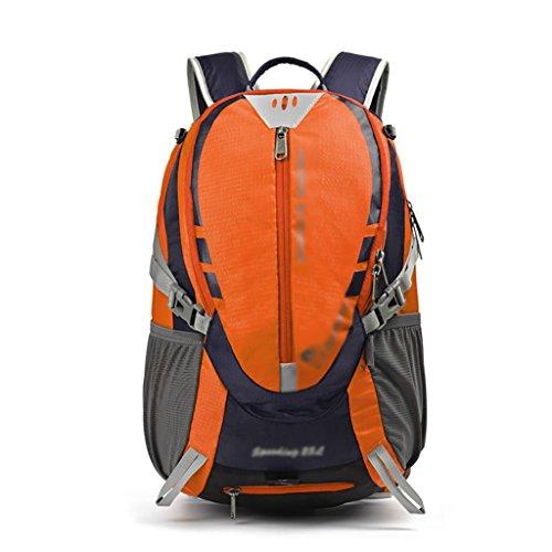 HWLXBB Borsa per alpinismo all'aperto Uomini e donne 25L Borsa per alpinismo multifunzione impermeabile Escursioni alpinismo Zaino per il tempo libero all'alpinismo zaino ( Colore : 3* ) 2*