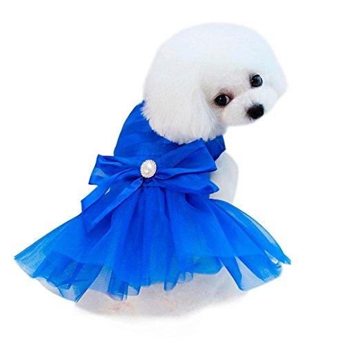 Kleidung Haustierhemd Kleiner Hund Kleid Mode Haustier Hund Bubble Dress Hund Katze niedlich Sommer Rock (M, Blue) Blue Bubble Kleid