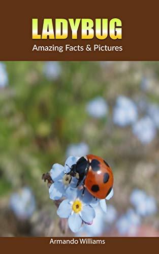 Ladybug: Amazing Facts & Pictures (English Edition)
