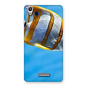 Cute Fish Multicolor Back Case Cover for Lava-Pixel-V1