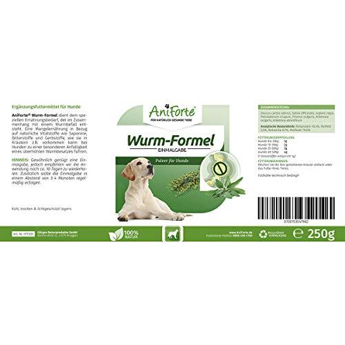 AniForte Wurm-Formel 250 g- Naturprodukt für Hunde - 4