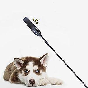 SimpleMfD Fouets d'entraînement Pet Supplies, Outil de Formation d'équitation de bâtons pour la Gestion du comportement des Chiens