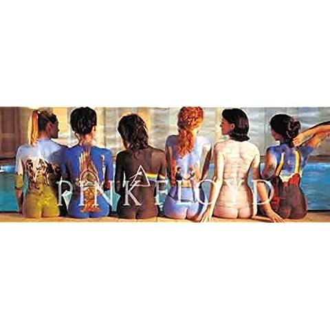 (21x 58) Pink Floyd–Back Catalogue Póster de tela de música