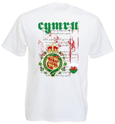 Nordirland - T-Shirt Herren Nationalhymne EM 2016 - (XL)