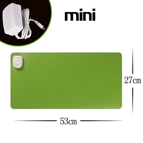 Mini 27 * 53cm Due Passi Regolare 20s Velocità di calore 24V per la sicurezza Tensione Cortex impermeabile imitazione di dispersione anti-skid Warm Tabella Mat elettrico del rilievo di riscaldamento ( colore : Verde )