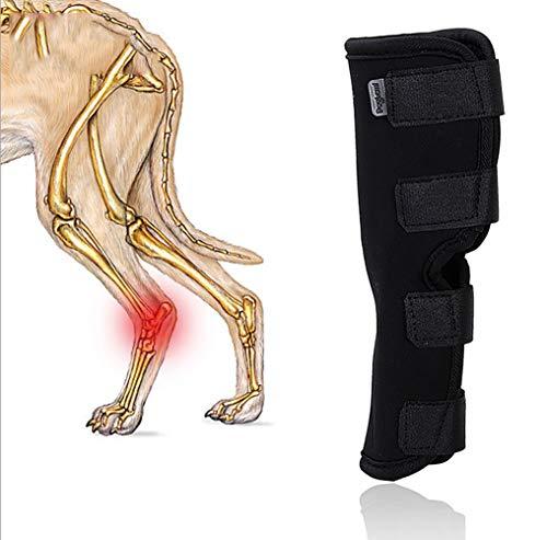 Gelenkbandage, Sprunggelenk Bandage Für Den Hund, Hinterbein Stützband - Schützt Wunden, verhindert Verletzungen und Verstauchungen,L