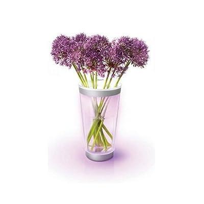 Philips Lumiware beleuchtete Vase, LED weiß und color, 6915360PH von Philips auf Lampenhans.de
