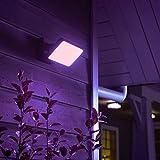Philips Hue White & Color Ambiance Discover Flutlicht, schwarz | LED-Strahler für den Aussenbereich, dimmbar, bis zu 16 Millionen Farben, steuerbar via App, Smartphone & Tablet