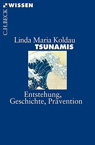 Tsunamis: Entstehung, Geschichte, Prävention