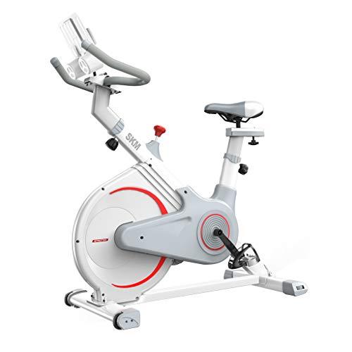 Snow Yang Magnetische aufrechte Fitness-Fahrrad-Last-Lager 265lb-perfekte Heimtrainer - tragbare Trainings-stationäre Fahrrad-Liegerad Heimtrainer -