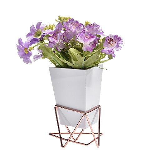 Sue Supply Wand und Schreibtisch Pflanzgefäßen Vase weiß Keramik und Kupfer-Sukkulente Air Pflanzen Mini Kaktus Künstliche Blumen Aufhängen Geometrische Wand Decor Übertopf Töpfe weiß (Air Pflanzen Schreibtisch)