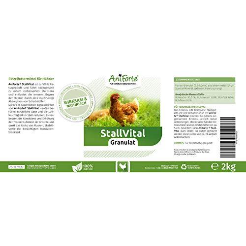 AniForte Stall Vital Granulat - 2