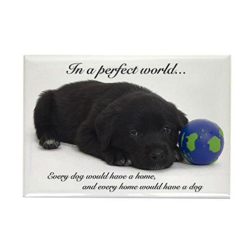 CafePress-in a perfect World (Labrador)-Rechteck Magnet, 5,1x 7,6cm Kühlschrank Magnet -