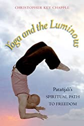 Yoga and the Luminous: Pata???jali's Spiritual Path to Freedom by Christopher Key Chapple (2008-10-30)