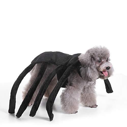 tüm, Spinnen-Design, Halloween, Tarantel, Haustier Kostüm, Outfit, Kleidung für Fellspinnen, Medium, schwarz ()