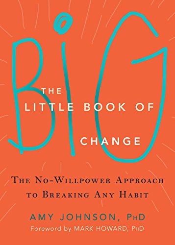 the-little-book-of-big-change-the-no-willpower-approach-to-breaking-any-habit
