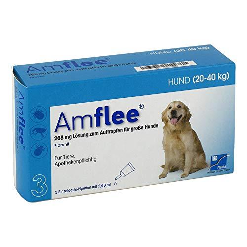 TAD Pharma GmbH Amflee 268 mg Lösung zur, 3 STK