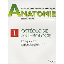 Ostéologie, arthrologie : Le squelette appendiculaire