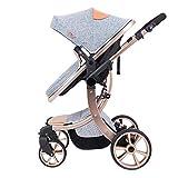 CDREAM Kinderwagen Zusammenfaltbar Baby Carriage Ab 0 Monate Bis 20 Kg Reise Buggy Mit Liegeposition Und Klappbar Baby Wagen,Grey(B)