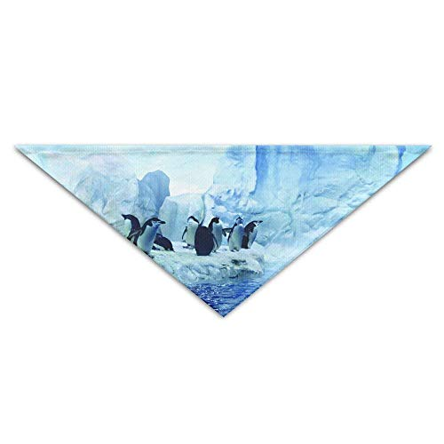 Hectwya Pet Bandanas Iceberg Antarktische Pinguine Animal Dancin (Patriot Boy Kostüm)