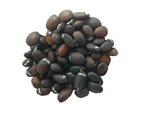 Cataire - 70 graines - Nepeta Cataria - Catnip ( Herbe à Chats ) - SEM03