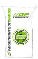Rasensamen Nachsaat GF Regeneration Grass 5 kg Grassamen Rasensaat