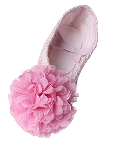 Feoya Sapatos De Ballet Dança Sapatos Com Sapatos Flor Chiffon Ballet De Tamanho Da Tela Superior De Couro Único Reforço De Couro 22-40 - Rosa