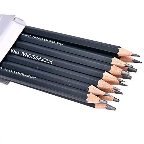 MMLC 14 Stück Bleistifte Skizzierstifte Set Professionelle Skizzieren und Zeichnen Art Set 12B 10B 8B 7B 6B 5B 4B 3B 2B B HB 2H 4H 6H (Black) -