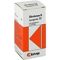 SYNERGON KOMPLEX 53 Abrotanum N Tabletten 100 St Tabletten preisvergleich bei billige-tabletten.eu