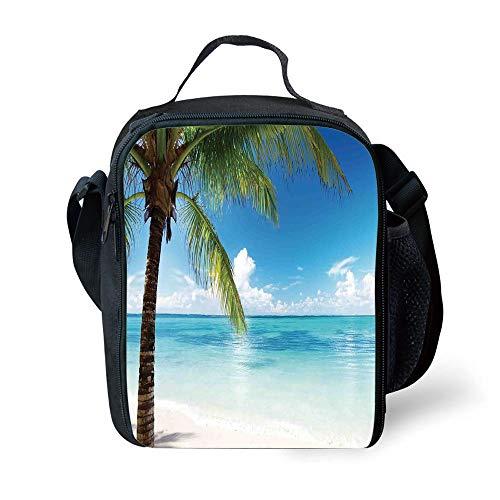 e479268530c88b Go green lunchbox der beste Preis Amazon in SaveMoney.es