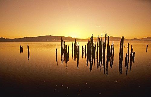 The Poster Corp Bilderbuch/Design Pics - Tillamook Bay at Sunrise Oregon Usa Photo Print (86,36 x 55,88 cm) Tillamook Bay