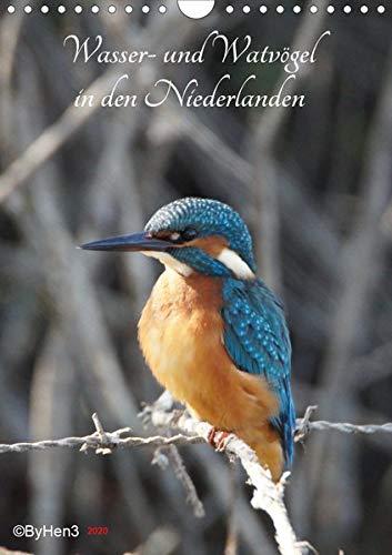 Wasser- und Watvögel in den Niederlanden (Wandkalender 2020 DIN A4 hoch): Die wunderbare Schönheit der Natur (Monatskalender, 14 Seiten ) (CALVENDO Tiere) -