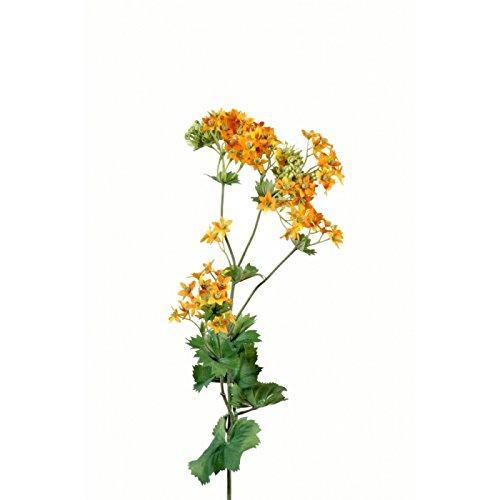 fleur coupee synthetique mollis small - h : 70