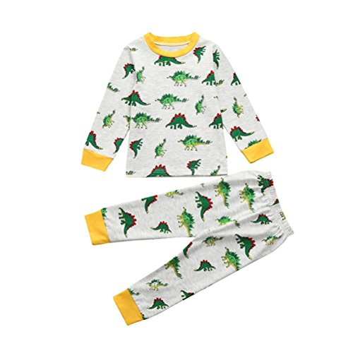 Dinglong Kids Toddler Baby Girls & Boys Cartoon Printed Dinosaurs Pajamas Set Tops+Pants, Child Clothes Sleepwear Outfits for Age 2-7 Years Grey