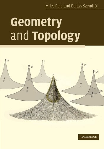 Geometry and Topology by Miles Reid (2005-12-19)