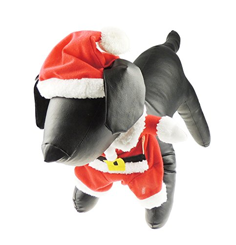 Festive rot & weiß Santa Girl Kleiner Hund Katze Weihnachten Kostüm Jumper Jacke ()