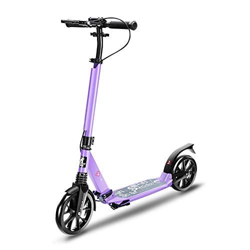 Erwachsene 2 Wheel Kick Scooters Mit Handbremse Und Riesenrädern, Geburtstagsgeschenke Für Kinder Ab 10 Jahren Jungen Mädchen, Unterstützung 100kg, Nicht Elektrisch (Farbe : Purple) (Frozen Scooter Kick)