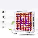 Lorenlli 600W Vollspektrum wachsen Lichtschalter LED Pflanzenwachstum Licht für Pflanzen Blume Gemüse Indoor Gewächshaus Hydroponik Licht