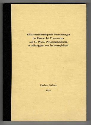 Elektronenmikroskopische Untersuchungen des Phloems bei Prunus-Arten und bei Prunus-Pfropfkombinationen in Abhängigkeit von der Verträglichkeit.