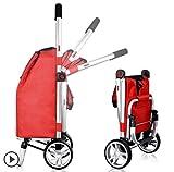 Best comprar tiendas - Carro de compras plegable de dos ruedas Carro Review