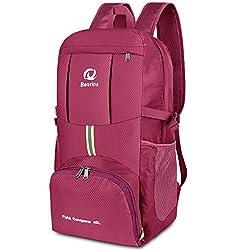 40L Ultraleicht Faltbare Rucksack, Wasserdichter Wanderrucksäcke Multipurpose Reiserucksack Daypack für Wandern Biken Trekking Klettern Bergsteiger Camping Schule Freizeit (Lila)