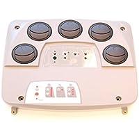 Webasto Aire placa de distribución de distribuidor de aire con Impuestos Tensiómetro 12 V ...