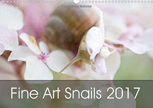 Fine Art Snails 2017 (Wall Calendar 2017 DIN A3 Landscape) (Calvendo Animals)