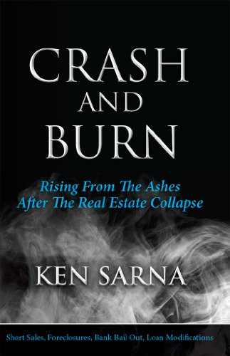 Crash and Burn. Rising from the Ashes after the Real Estate Collapse (English Edition)