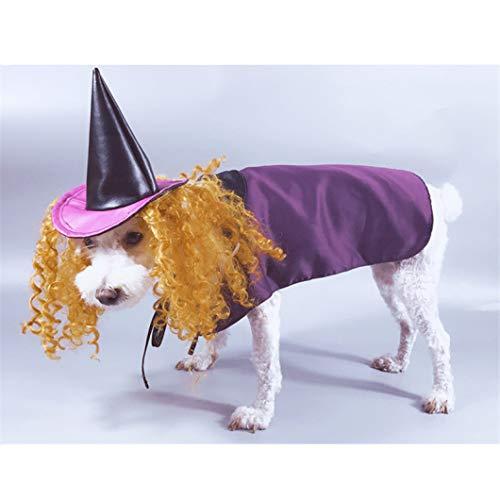 AMURAO Haustier-Hundehemd-lustiger - Gandalf Katze Kostüm