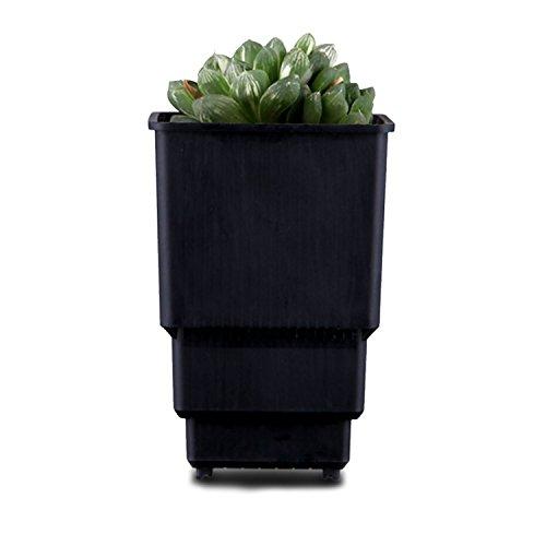 Kreative funktionelle Blumentopf Root-Control leichte Kunststoff Sukkulenten Topf Pflanzer mit Entwässerung Löcher (Color : Black, Size : L) (Leichte Indoor-pflanzer)